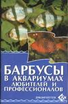 Барбусы в аквариумах любителей и профессионалов
