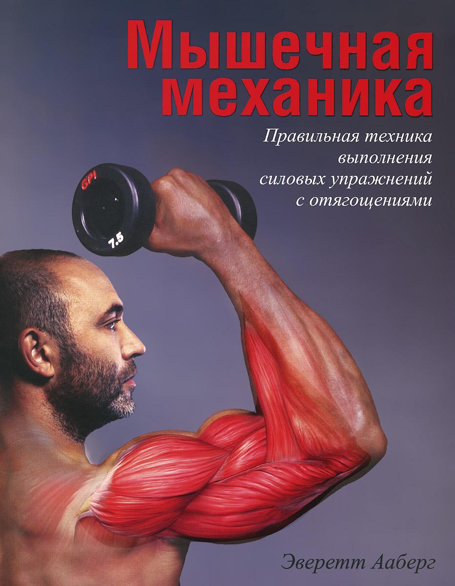 Мышечная механика.