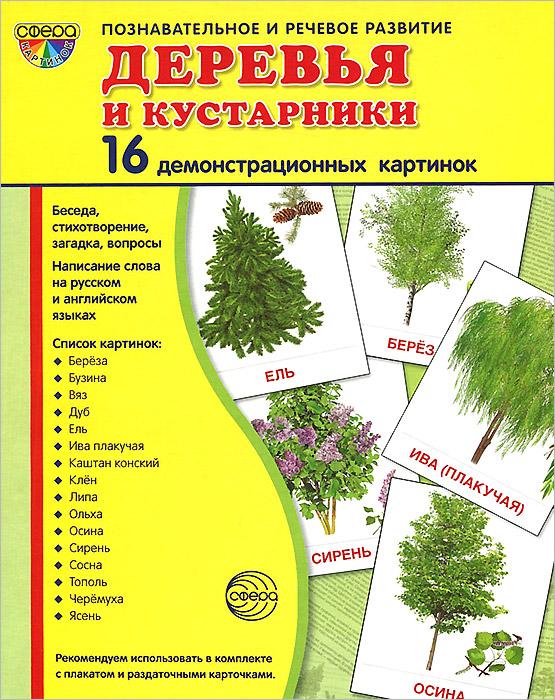Деревья и кустарники (набор из 16 демонстрационных картинок)