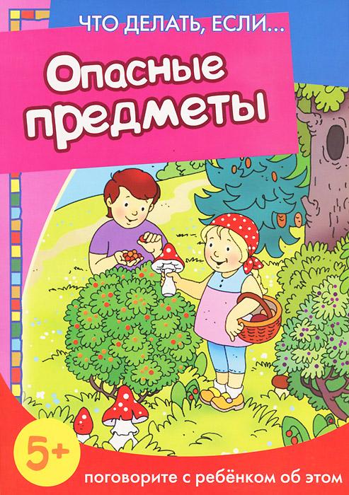 Н. Н. Евдокимова Опасные предметы