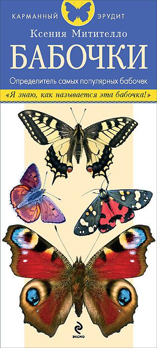 Бабочки. Определитель самых популярных бабочек