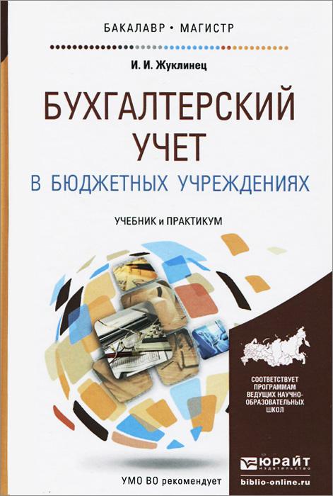 Бухгалтерский учет в бюджетных учреждениях. Учебник и практикум