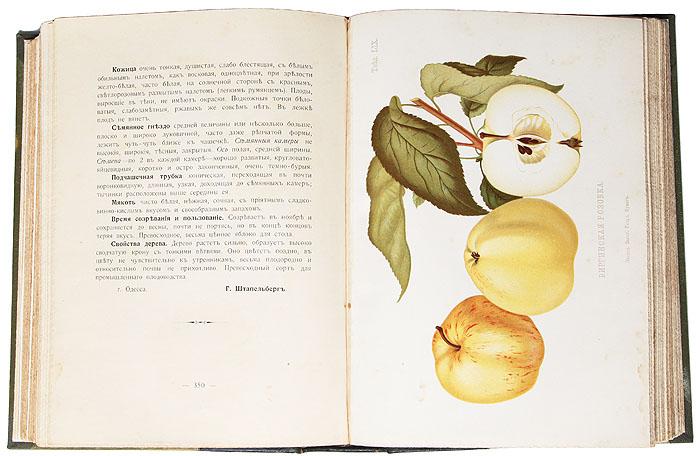 Атлас плодов. Выпуски I, II, III, и IV