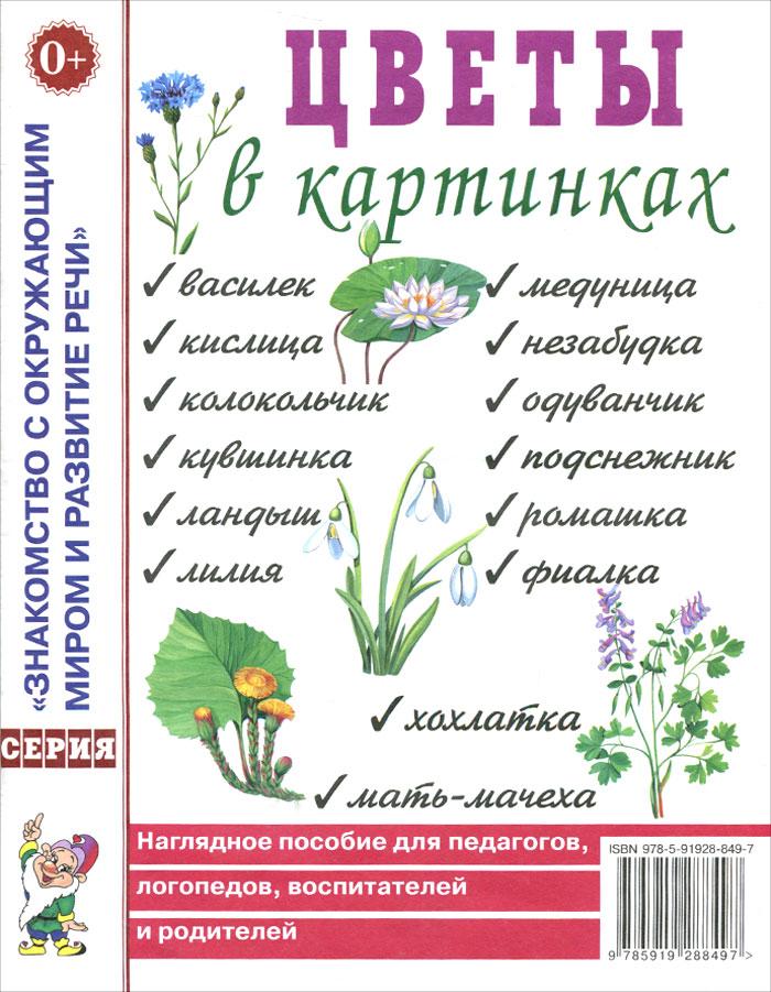 Цветы в картинках. Наглядное пособие для педагогов, логопедов, воспитателей и родителей