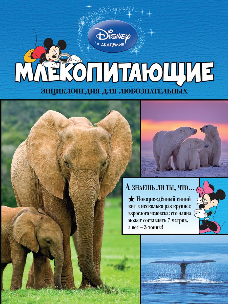 Млекопитающие12296407Герои Disney приглашают маленьких читателей исследовать окружающий мир! В этой книге они узнают всё самое интересное о попугаях, колибри, страусах, пингвинах, сычах и других невероятных птицах. Любимые персонажи расскажут, какие пернатые живут в подземных норках, зачем павлинам яркие хвосты, кто такие птицы-носороги, и о многом другом. Ребят ждут не только любопытнейшие факты, изложенные доступным и увлекательным языком, но и большие красочные иллюстрации! Они снабжены уникальными подписями, разъясняющими особенности и назначение той или иной части тела каждой птицы. А ещё благодаря этой книге маленькие читатели разовьют познавательные способности, кругозор и структурное мышление, а также получат первый опыт работы с энциклопедической литературой. Издание предназначено для детей младшего школьного возраста.