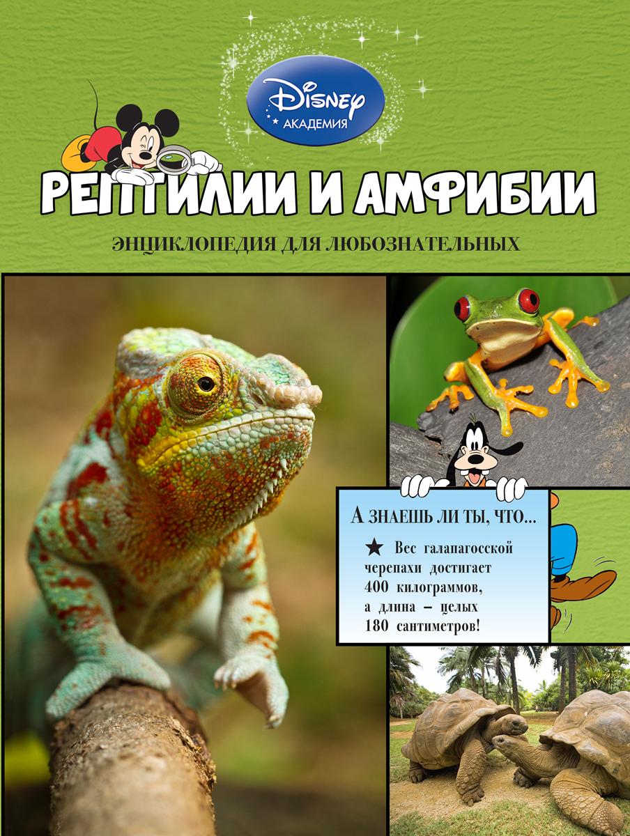 Рептилии и амфибии12296407Герои Disney приглашают маленьких читателей исследовать окружающий мир! В этой книге они узнают всё самое интересное о хамелеонах, гекконах, черепахах, змеях, лягушках, крокодилах и других невероятных рептилиях и амфибиях. Любимые персонажи расскажут, почему ящерицы отбрасывают хвосты, зачем грифовым черепашкам ярко-розовые языки, кто из саламандр дышит кожей, и о многом другом. Ребят ждут не только любопытнейшие факты, изложенные доступным и увлекательным языком, но и большие красочные иллюстрации! Они снабжены уникальными подписями, разъясняющими особенности и назначение той или иной части тела каждого животного. А ещё благодаря этой книге маленькие читатели разовьют познавательные способности, кругозор и структурное мышление, а также получат первый опыт работы с энциклопедической литературой. Издание предназначено для детей младшего школьного возраста.