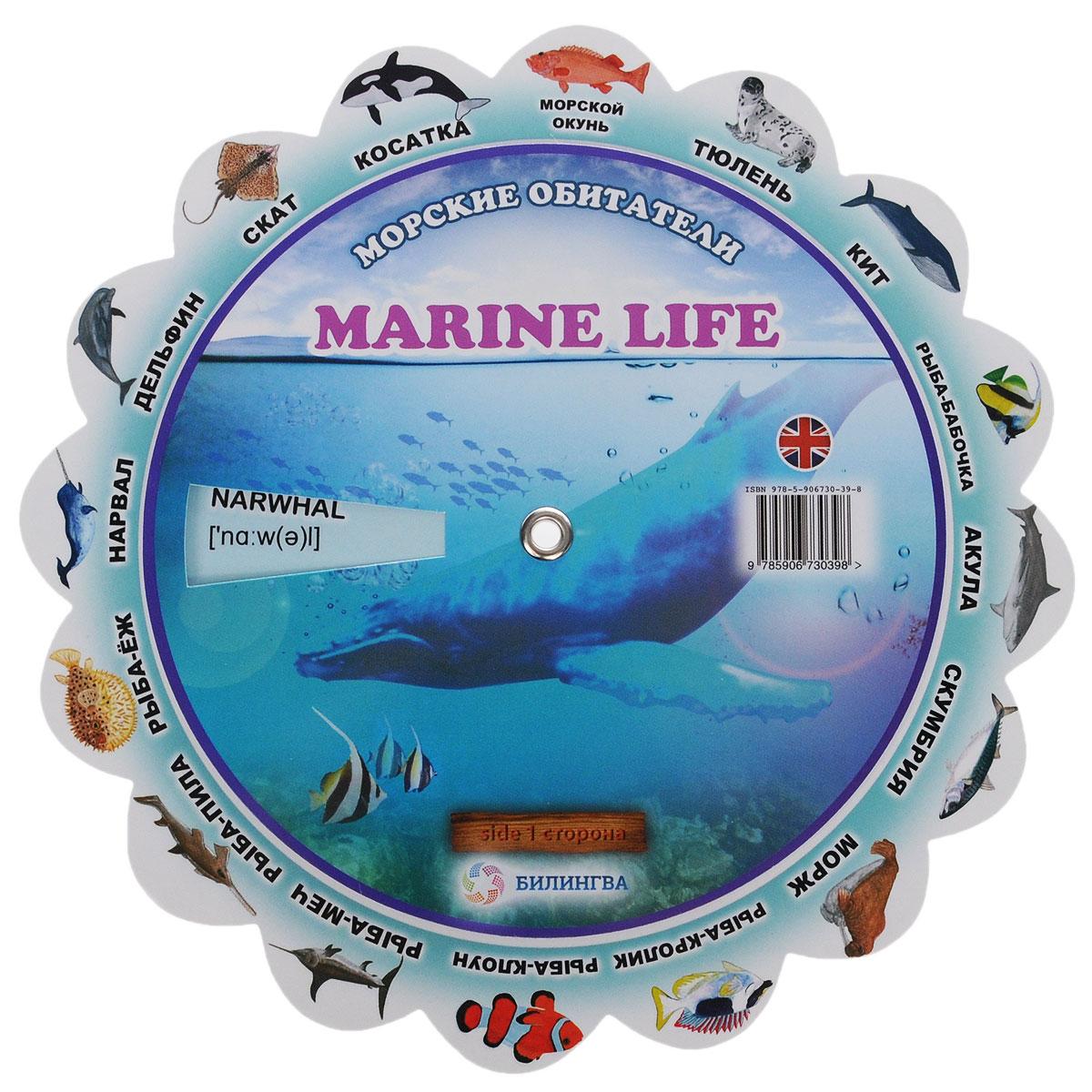 Marine Life / Морские обитатели. Иллюстрированный тематический словарь