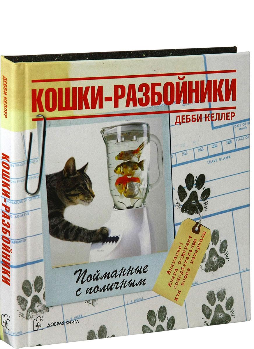 Кошки-разбойники
