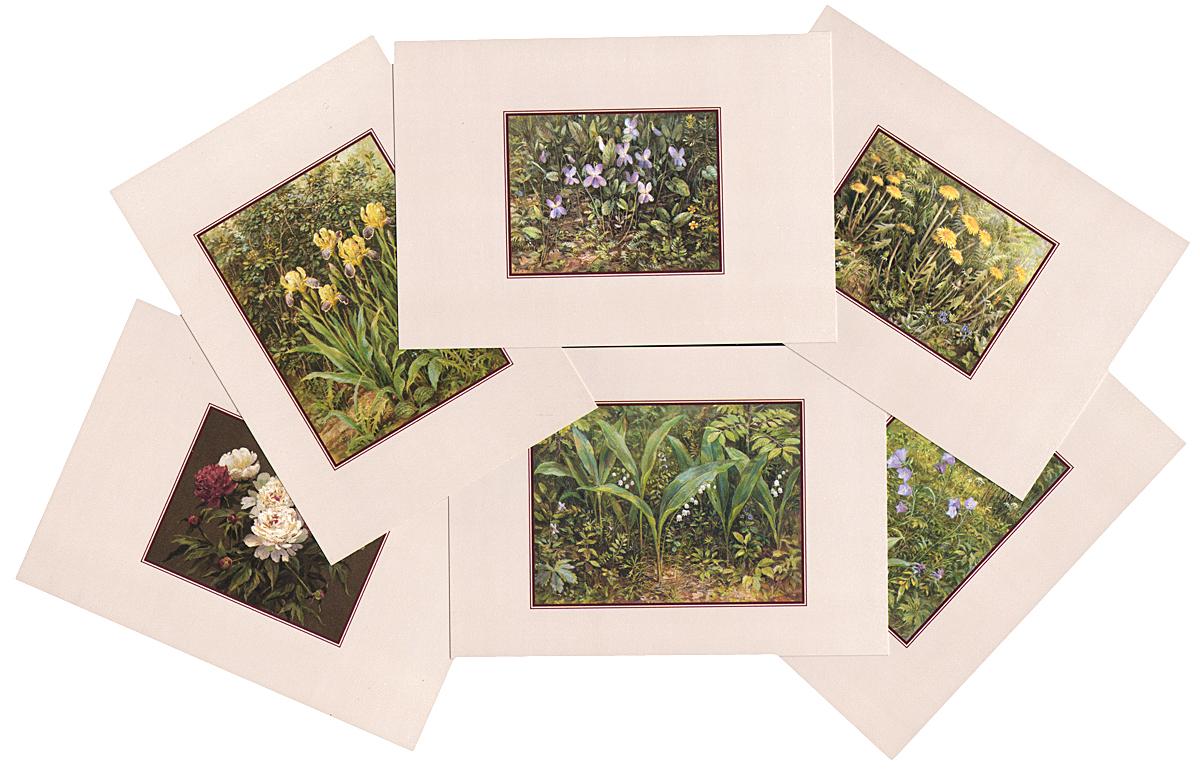 Цветы. Выпуск 4 (набор из 15 открыток)