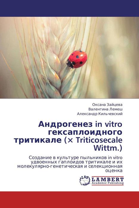 Андрогенез in vitro гексаплоидного тритикале (? Triticosecale Wittm.)