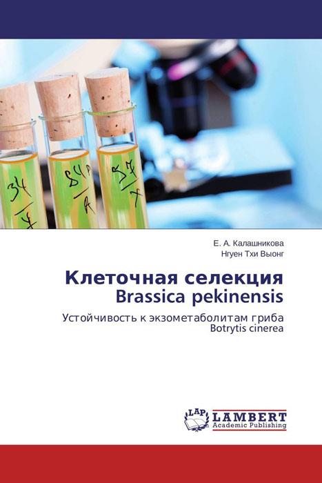 Е. А. Калашникова und Нгуен Тхи Выонг Клеточная селекция Brassica pekinensis
