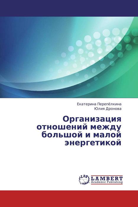 Екатерина Перепёлкина und Юлия Дронова Организация отношений между большой и малой энергетикой