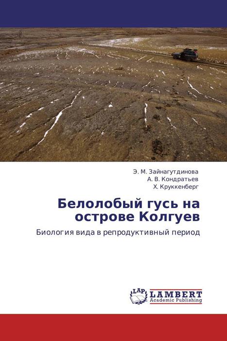 Белолобый гусь на острове Колгуев