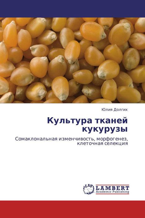 Юлия Долгих Культура тканей кукурузы