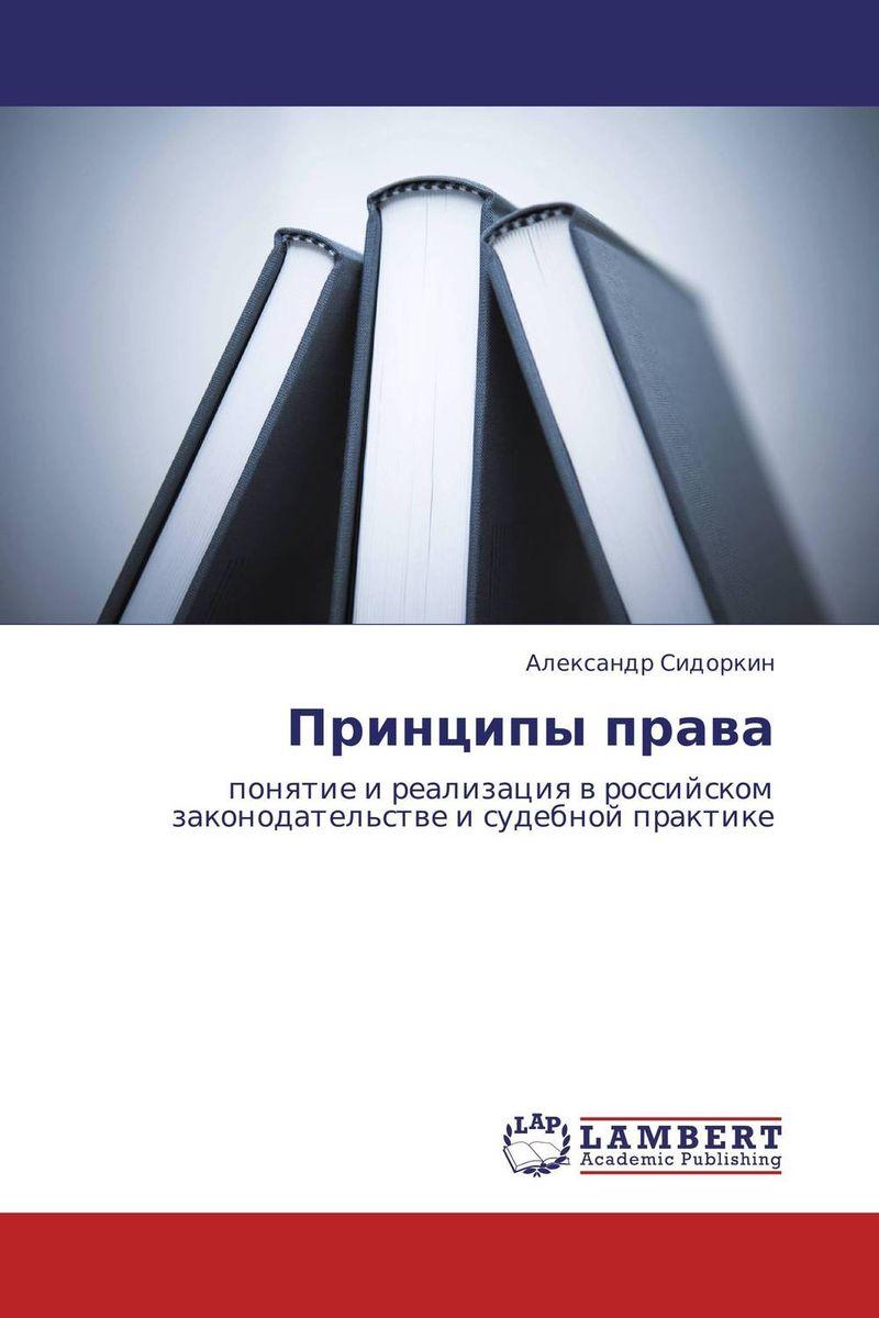 Александр Сидоркин Принципы права