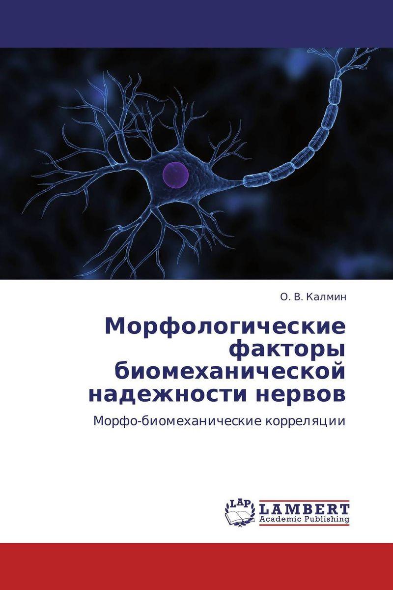 Морфологические факторы биомеханической надежности нервов