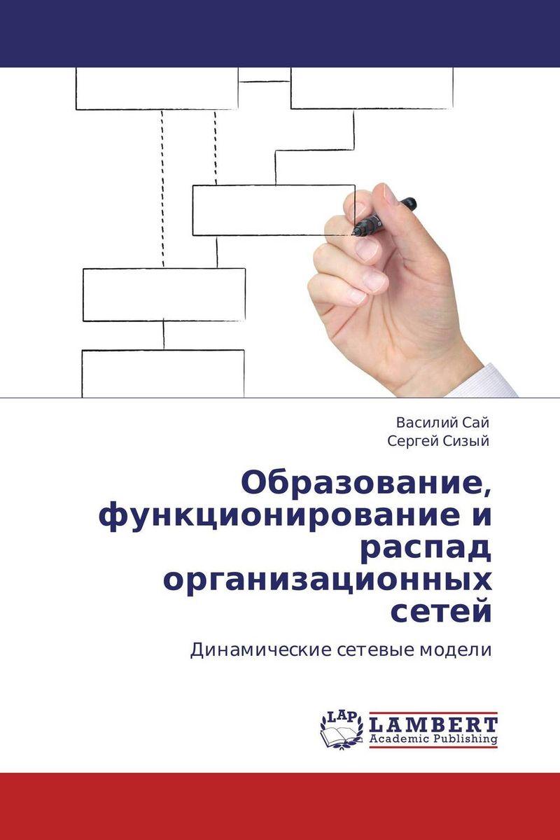 Образование, функционирование и распад организационных сетей