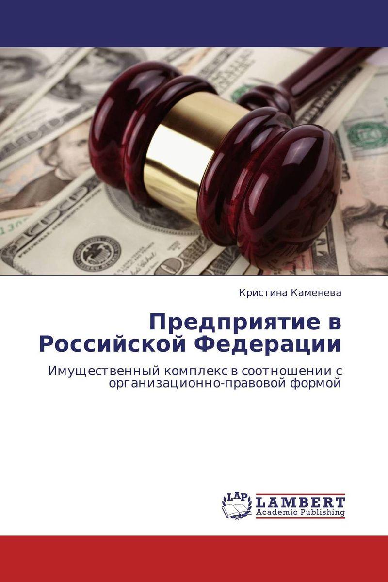 Кристина Каменева Предприятие в Российской Федерации