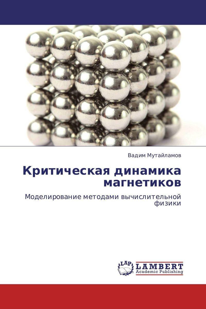 Вадим Мутайламов Критическая динамика магнетиков марина мамонова физика поверхности теоретические модели и экспериментальные методы