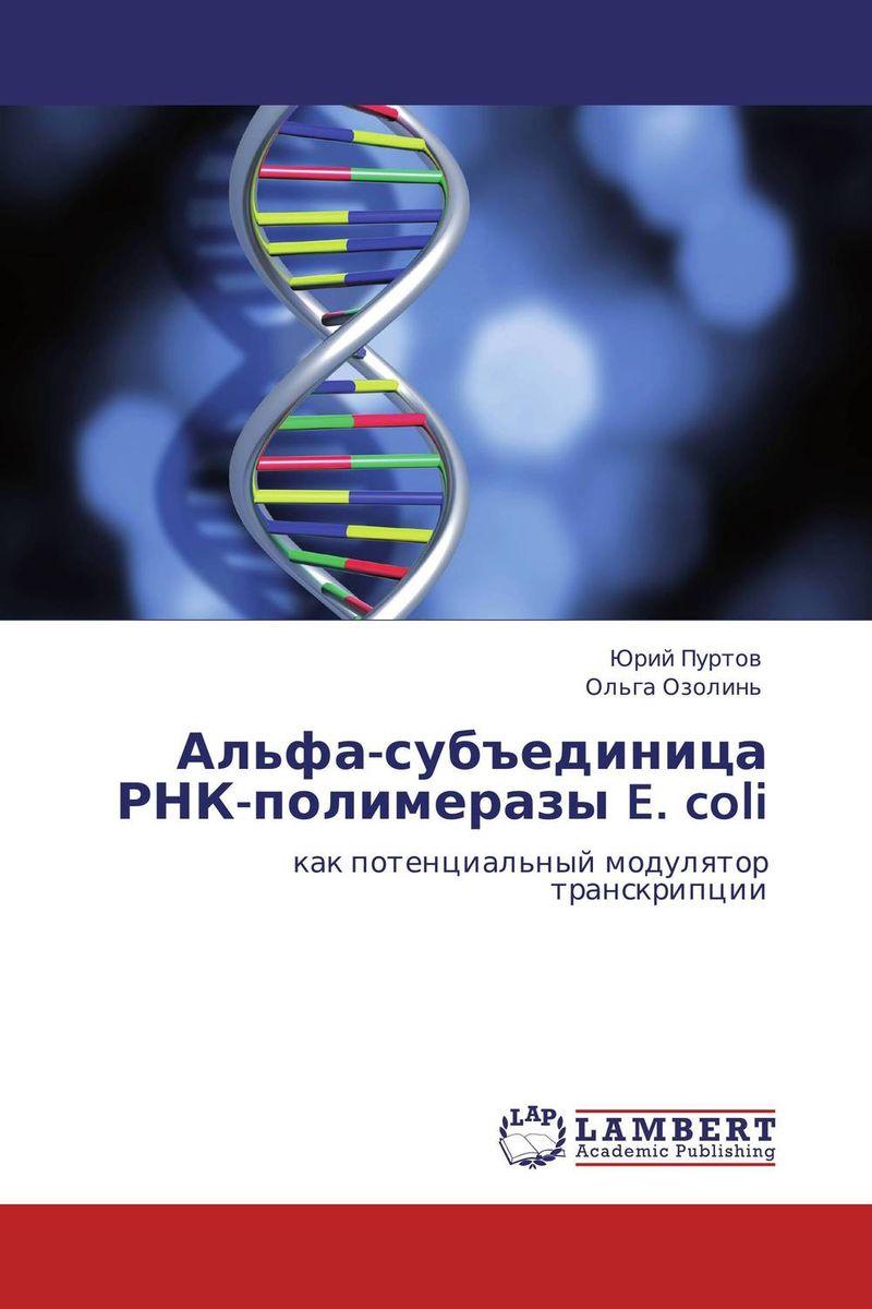 Альфа-субъединица РНК-полимеразы E. coli