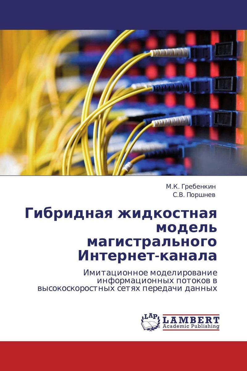 Гибридная жидкостная модель магистрального Интернет-канала