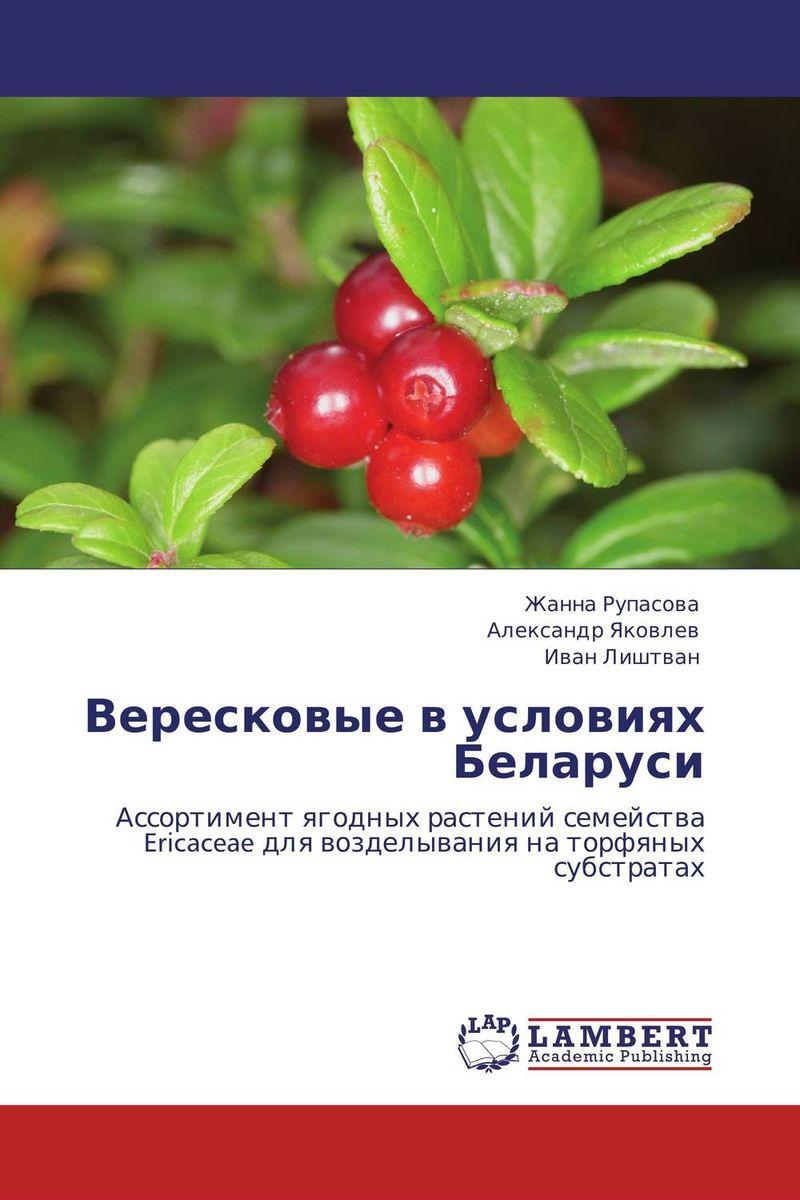 Вересковые в условиях Беларуси