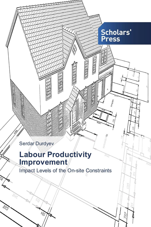 Labour Productivity Improvement