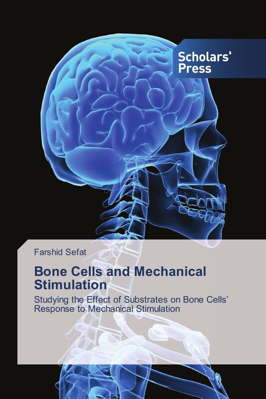 Bone Cells and Mechanical Stimulation