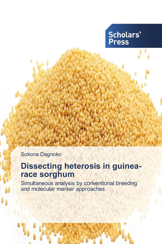 Dissecting heterosis in guinea-race sorghum