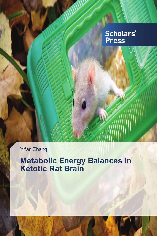 Metabolic Energy Balances in Ketotic Rat Brain