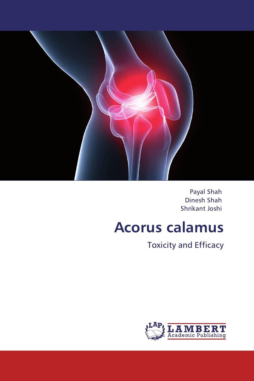 Acorus calamus