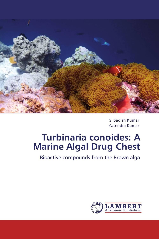 Turbinaria conoides: A Marine Algal Drug Chest