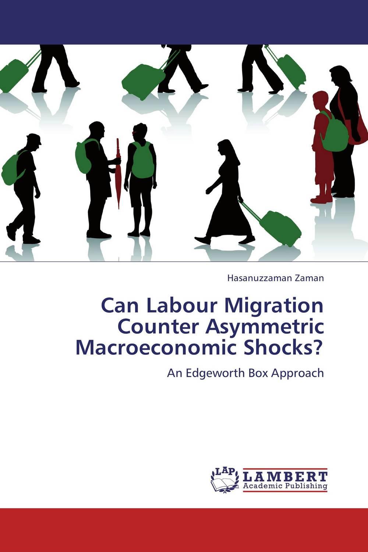 Can Labour Migration Counter Asymmetric Macroeconomic Shocks?