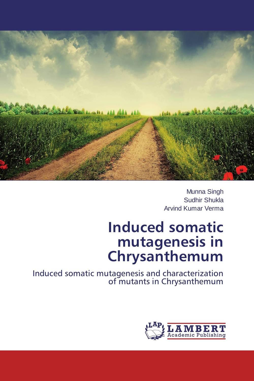 Induced somatic mutagenesis in Chrysanthemum