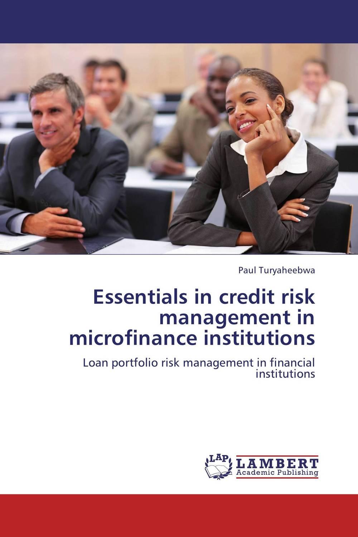 Essentials in credit risk management in microfinance institutions