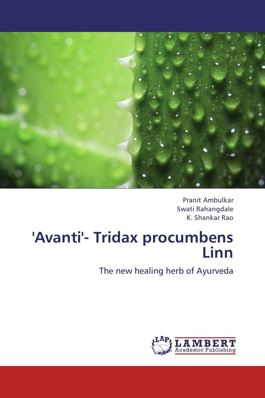 'Avanti'- Tridax procumbens Linn