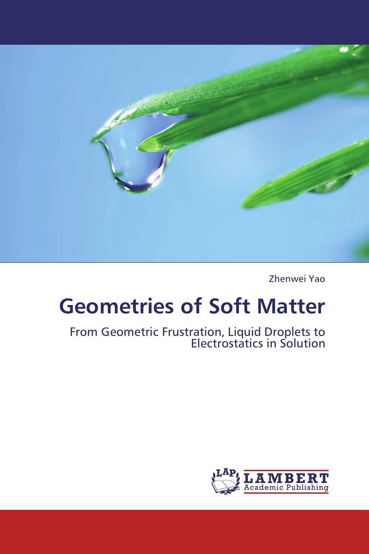 Geometries of Soft Matter