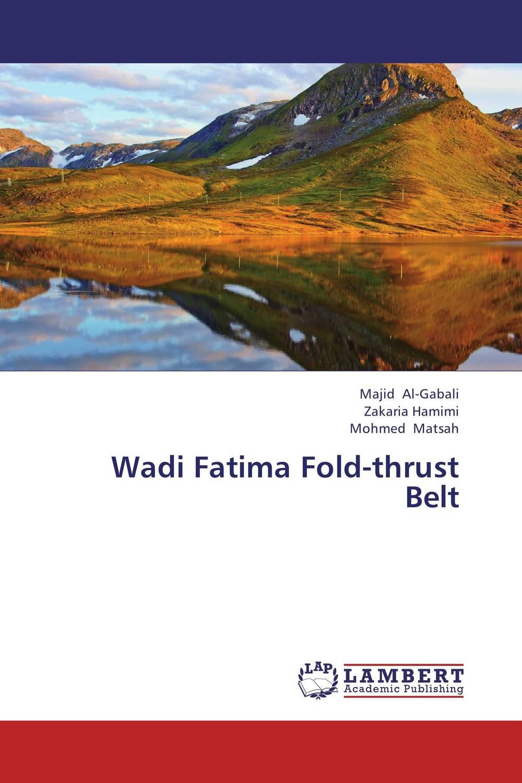 Majid Al-Gabali,Zakaria Hamimi and Mohmed Matsah Wadi Fatima Fold-thrust Belt