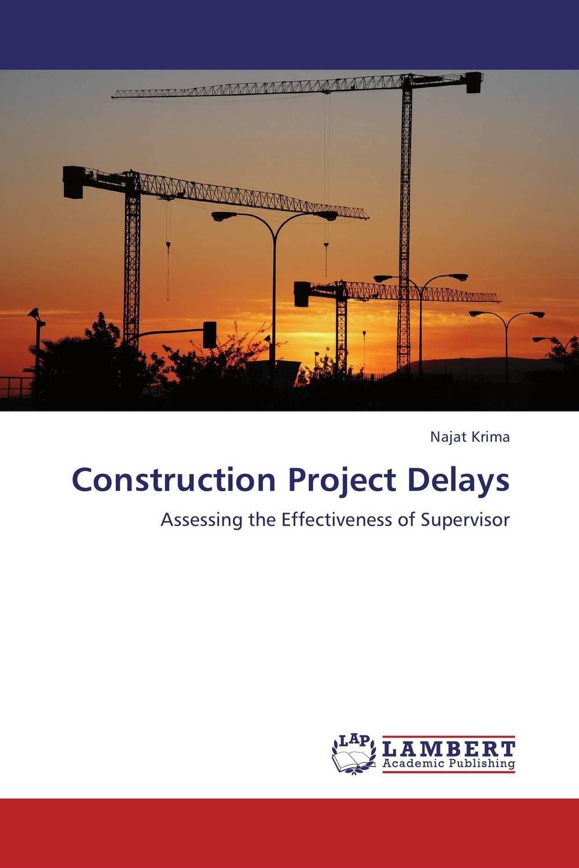 Construction Project Delays