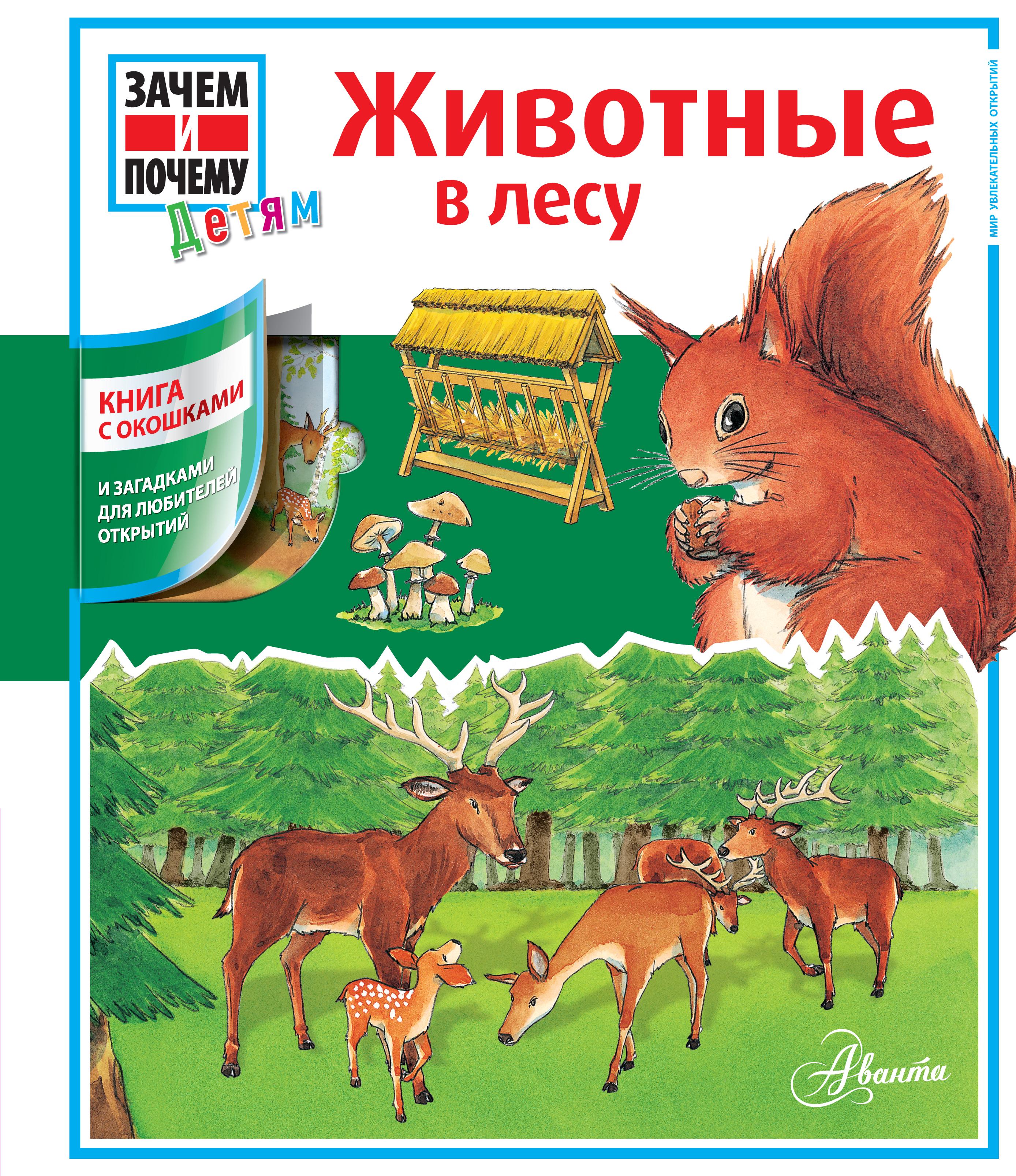 Животные в лесу. Книга с окошками