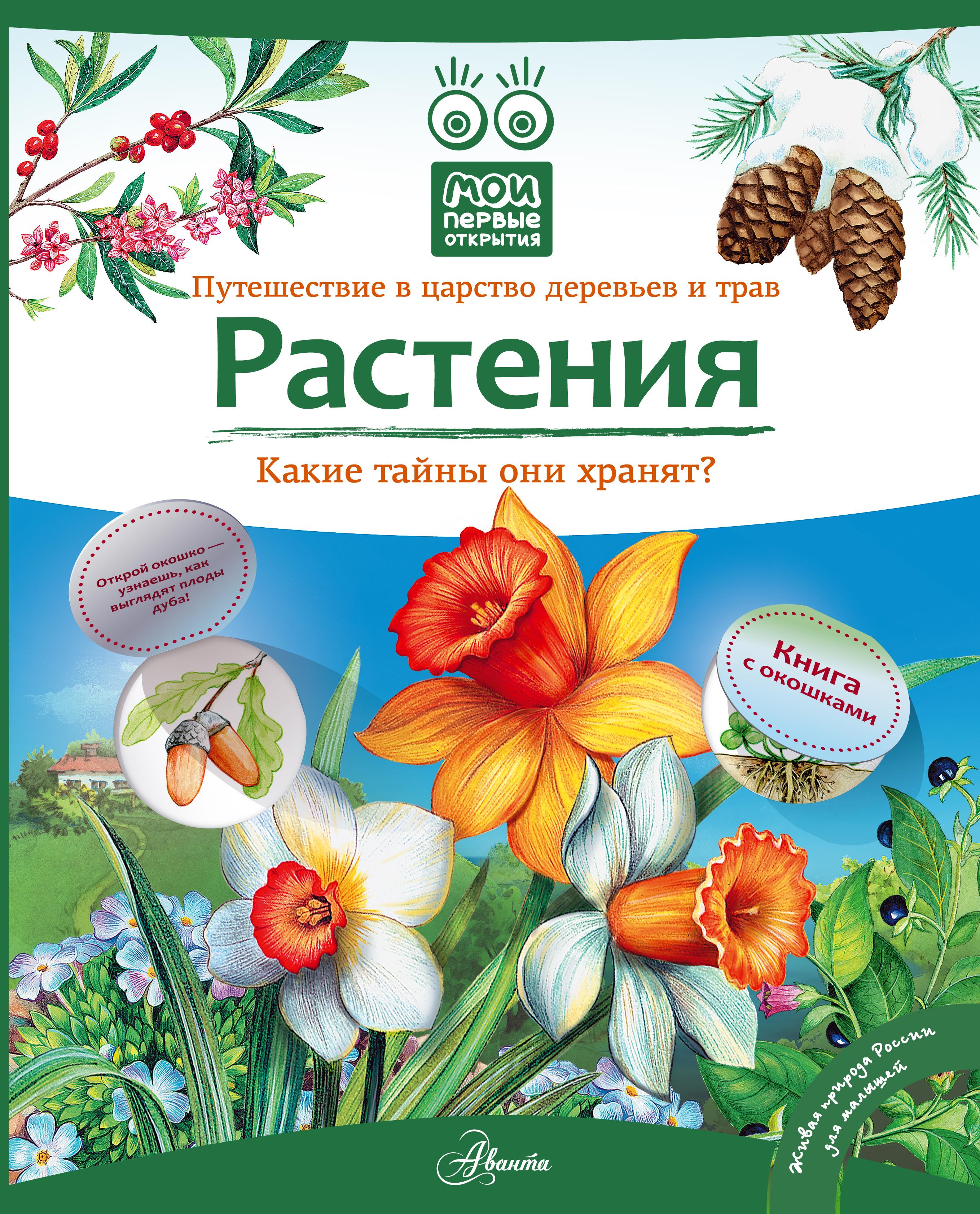 Растения. Книга с окошками