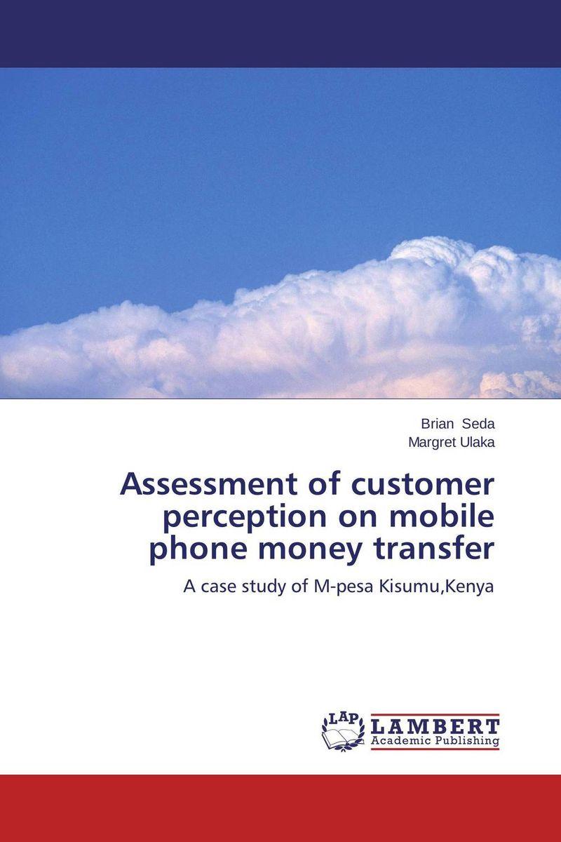 Assessment of customer perception on mobile phone money transfer