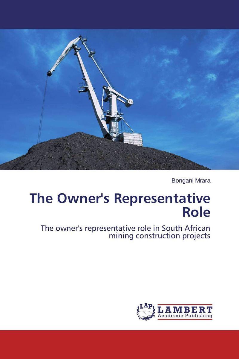 The Owner's Representative Role