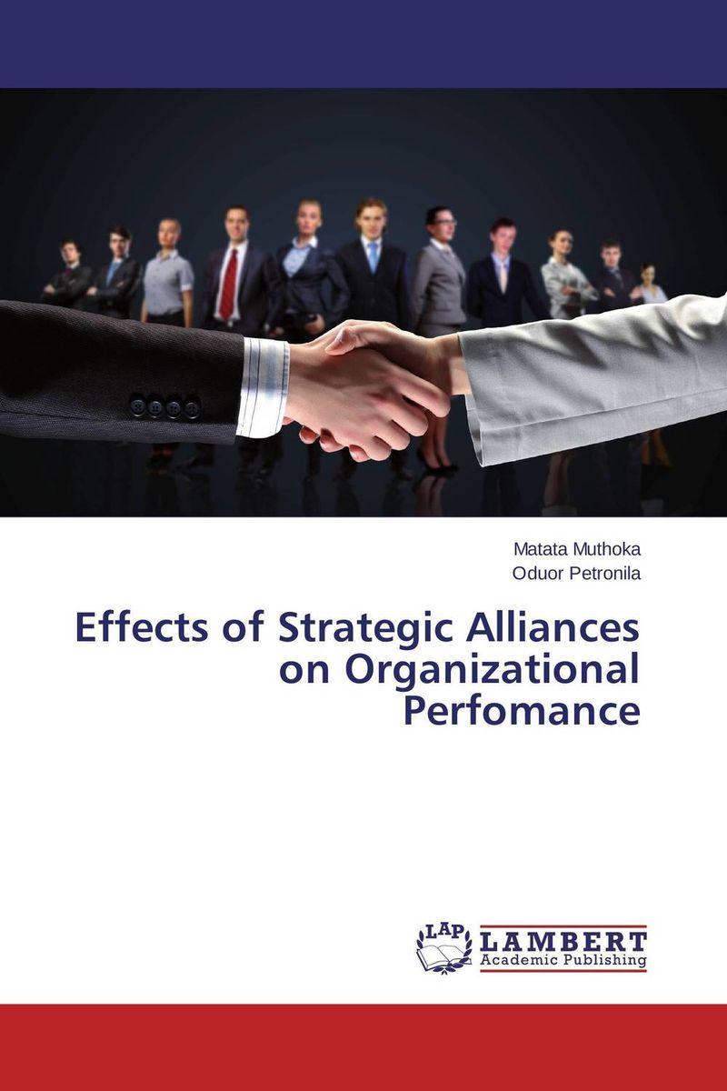 strategic alliance in an organization essay