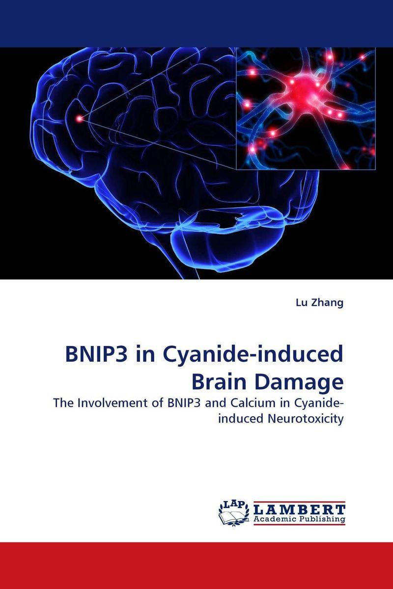 BNIP3 in Cyanide-induced Brain Damage