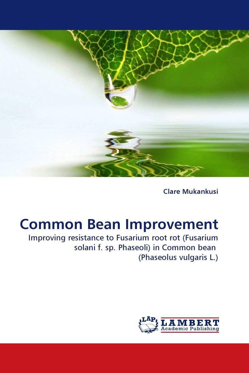 Common Bean Improvement