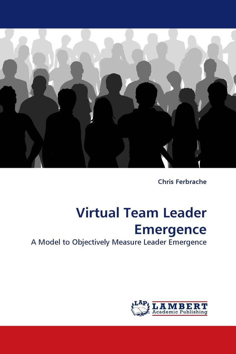 Virtual Team Leader Emergence
