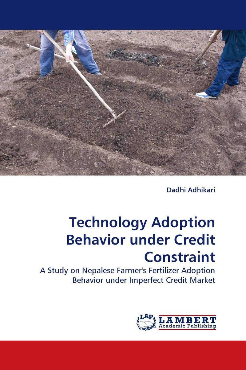 Technology Adoption Behavior under Credit Constraint