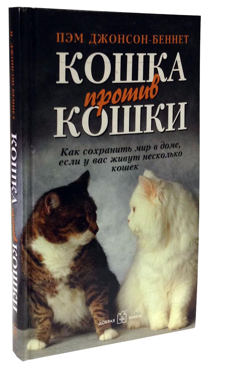 Кошка против кошки. Как сохранить мир в доме, если у вас живут несколько кошек
