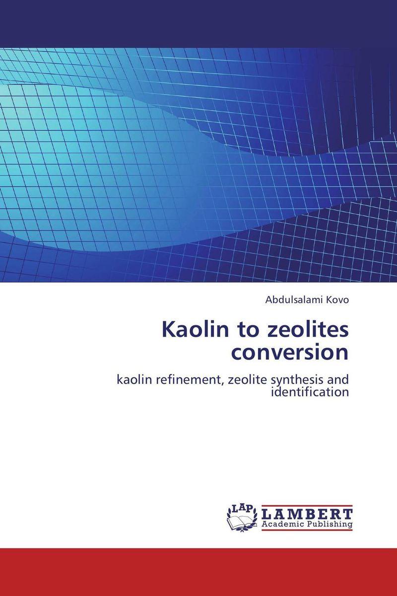 Kaolin to zeolites conversion